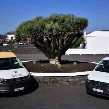 Tour 4x4: Lanzarote Route du Sud